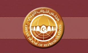 HoR to discuss 2021 budget and Sovereign Positions at next Monday 14 session